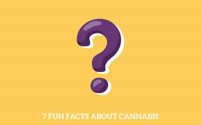 Seven Fun Facts About Cannabis